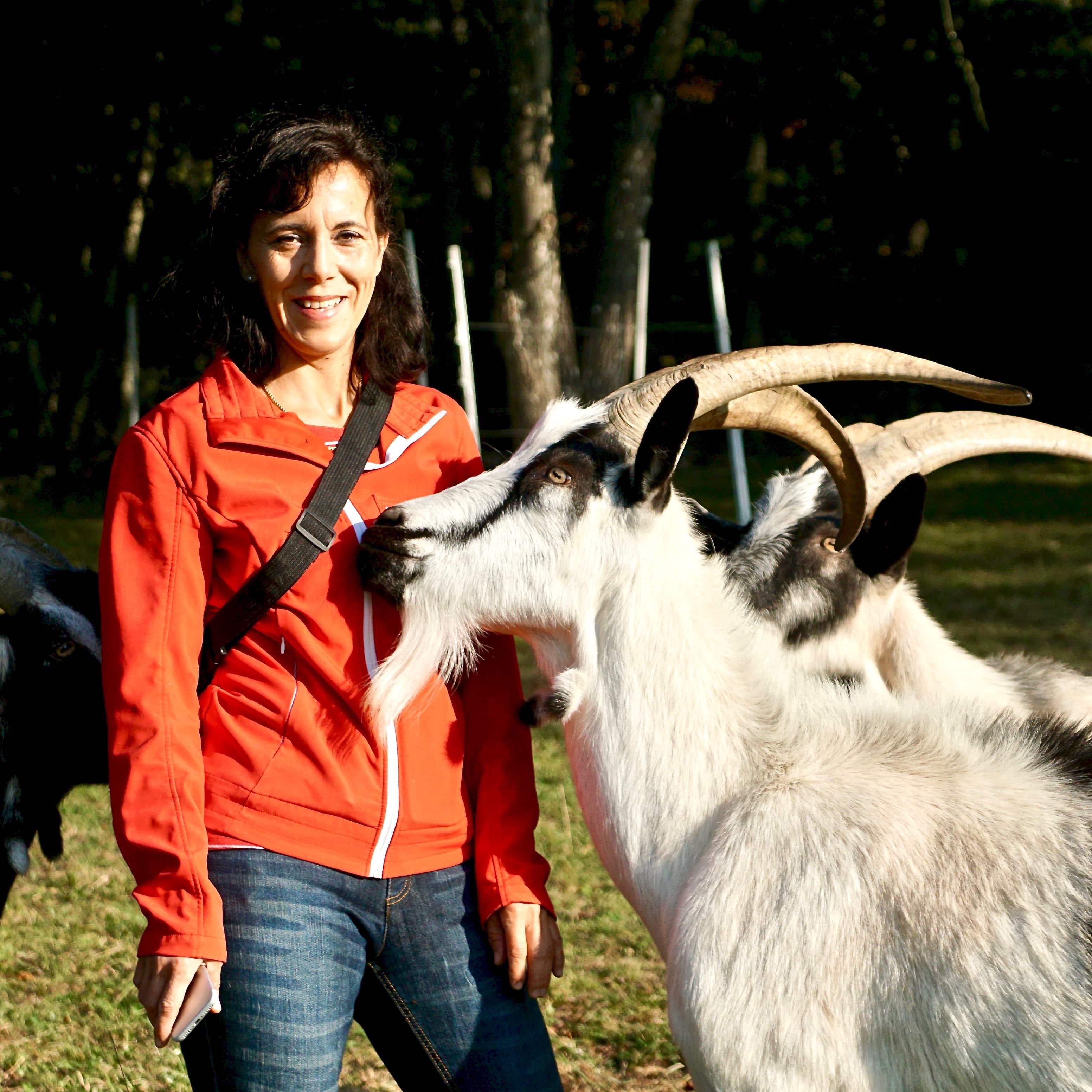 Wanderung mit Packgeissen Jurapark Aargau Wanderleiterin Vera Schmid