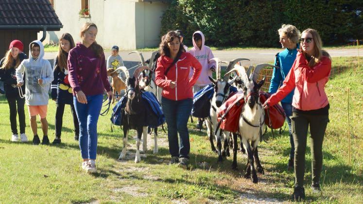 Wanderung mit Packgeissen Jurapark Aargau Tourenstart in Mönthal