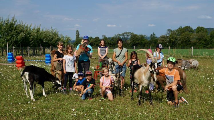 Plauschnachmittag mit Tieren 25. August